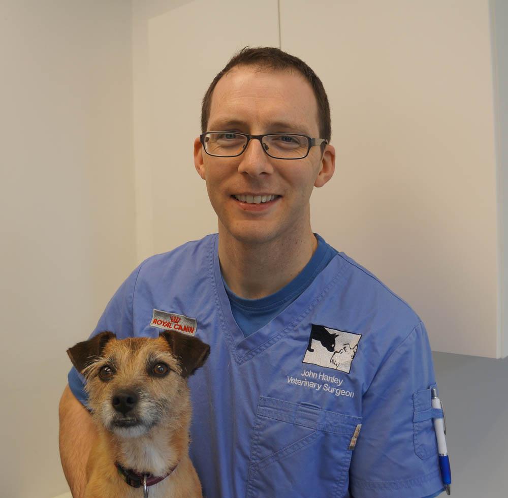 John Hanley - Veterinary Surgeon